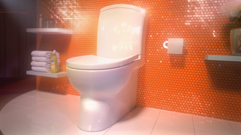 Render of loo from Bloo TV Advert